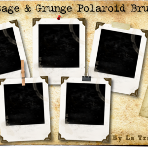 5 Grunge Polaroid Brushes