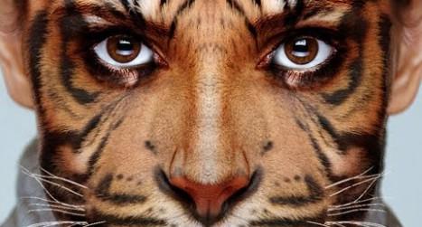 Transform your face into an animal