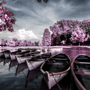 Create a Beautiful Infrared Effect in Photoshop