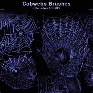 Cobwebs Photoshop Brushes