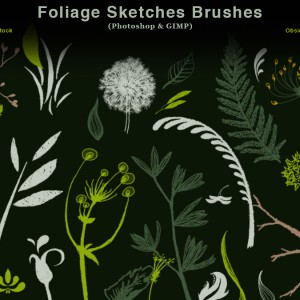 Foliage Sketches Photoshop Brushes