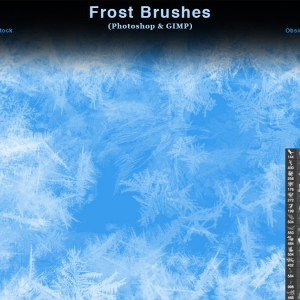 Frost Texture Photoshop Brushes