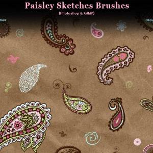 Paisley Sketches Photoshop Brushes