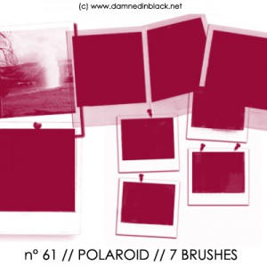 PHOTOSHOP BRUSHES : polaroid