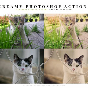 Photoshop Creamy Actions