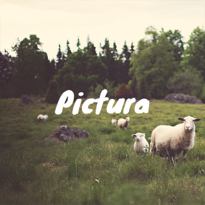 Search Flickr for images in Photoshop with Pictura Plugin