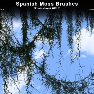 Spanish Moss Photoshop Brushes