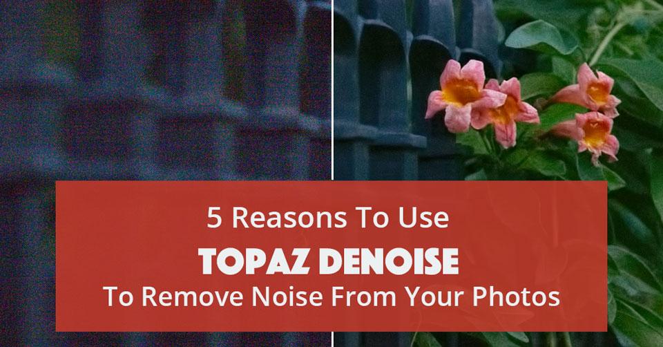 topaz labs denoise 5 free download